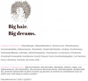 peau neuve jesuismodeste blog cheveux frisé crépus naturaliste naturel bio kinky fris big hair big dream routine