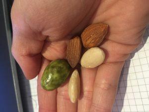 amande lover gula snack jesuismodeste blog végéendevenir article avis dégustation
